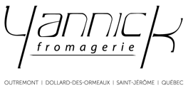 YF-VECTO-LogoNoir